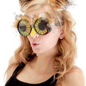 Kit de Acessórios Coruja Orelhas + Óculos OWL EARS AND GLASSES