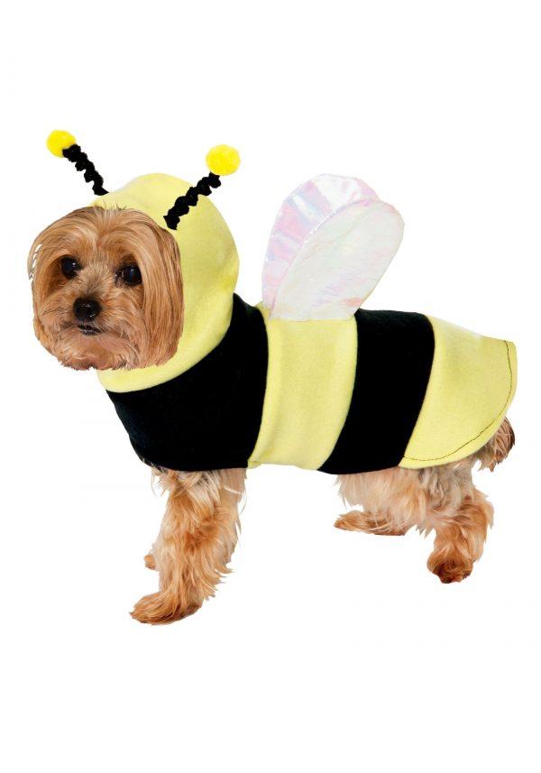 Fantasia de ABelhinha para Cachorro- Bumble Bee Costume for Dogs