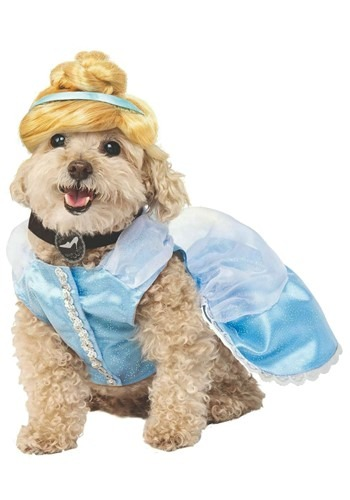 Fantasia de Cinderela Cachorro – Cinderella Dog Costume