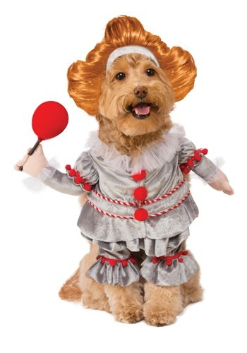 Fantasia de IT a Coisa Para cães – IT Pennywise Dog Costume