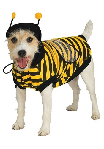 Fantasia de abelhinha para cachorro – Bumble Bee Dog Costume