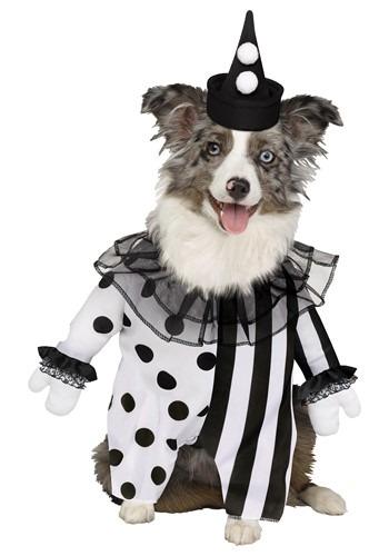 Fantasia de animal de estimação de palhaço assassino – Killer Clown Pet Costume