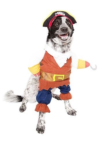 Fantasia de animal de estimação de pirata- Pirate Pet Costume