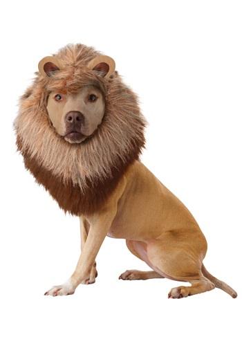 Fantasia de animal de estimação do leão – Lion Pet Costume