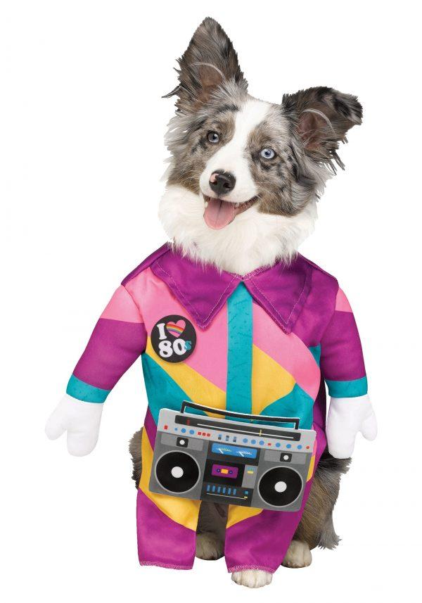 Fantasia de animal de estimação dos anos 80 – 80's Pet Costume
