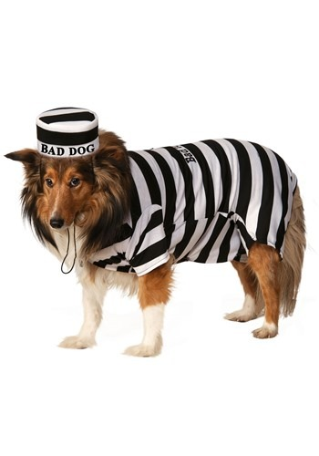 Fantasia de animal de estimação prisioneiro-Prisoner Pet Costume