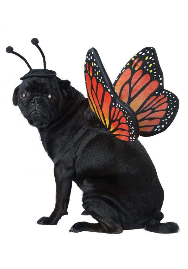 Fantasia de borboleta para animais de estimação – Monarch Butterfly Costume for Pets