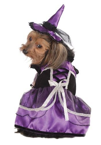 Fantasia de bruxa para cão – Purple Witch Dog Costume