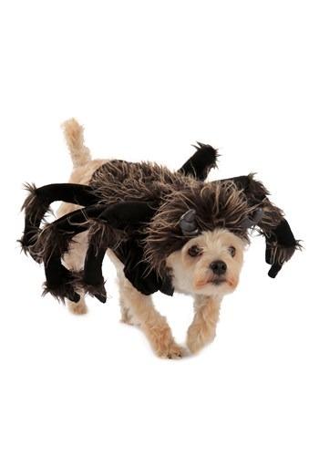 Fantasia de cão de tarântula – Tarantula Dog Costume