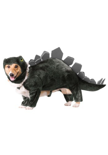 Fantasia de cão estegossauro – Stegosaurus Dog Costume