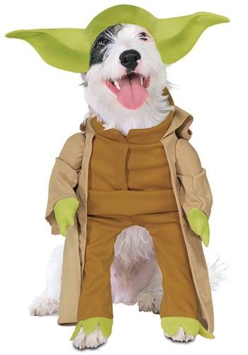 Fantasia de cachorro Yoda- Yoda Dog Costume