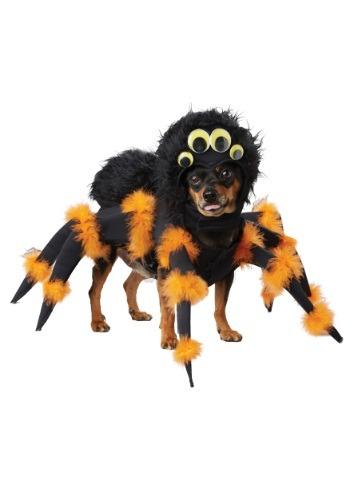 Fantasia de cachorro aranha – Spider Pup Costume