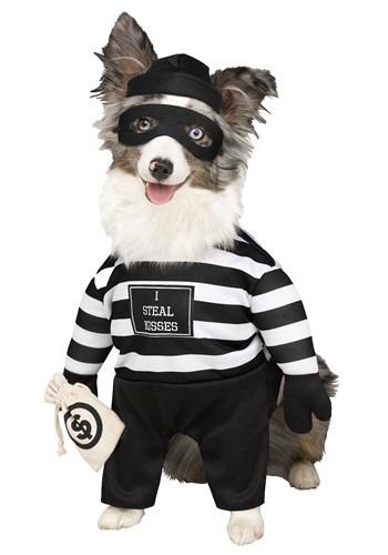 Fantasia de cachorro ladrão – Robber Pup Pet Costume