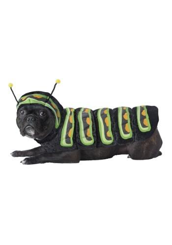 Fantasia de cachorro lagarta – Caterpillar Dog Costume