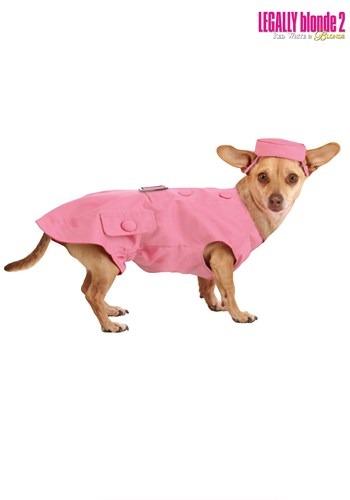 Fantasia de cachorro legalmente loira 2 Bruiser – Legally Blonde 2 Bruiser Dog Costume