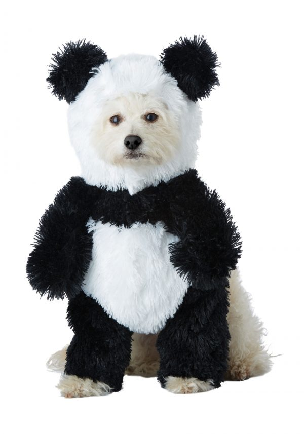 Fantasia de cachorro panda – Panda Dog Costume