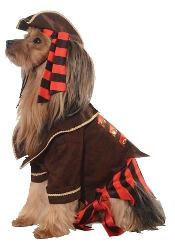 Fantasia de cachorro pirata – Pirate Dog Costume