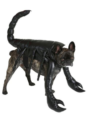 Fantasia de escorpião para cães – Scorpion Costume for Dogs