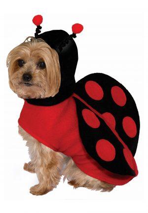 Fantasia de joaninha para cães – Ladybug Costume for Dogs