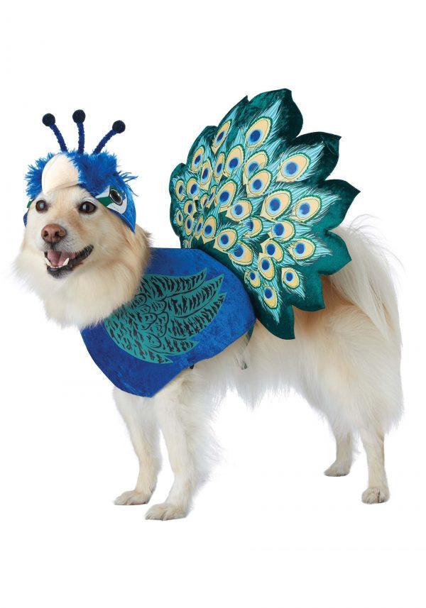 Fantasia de pavão para animais de estimação – Pretty as a Peacock Costume for Pets