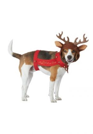 Fantasia de rena de cachorro – Dog Reindeer Costume